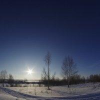 зимушка-зима :: Ольга Шарко