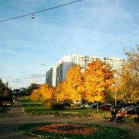 Осень :: Ая Цыга