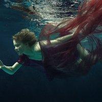 Underwater butterfly. :: Дмитрий Лаудин