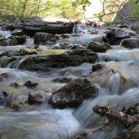Шумная весенняя горная речка :: Николай Кононцев