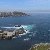 Океанариум в А Коруна :: Алексей Меринов