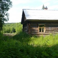 Домик в лесу :: Сергей Лысков