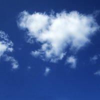 облака белогривые :: Ксения Грибанова