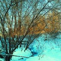 Настоящий сибирский ручей не замерзает даже в -33 :: Мария К.