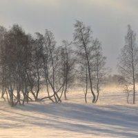 Поздравляю Планету с открытием Зимних Олимпийских Игр в г.Сочи ! :: Maxxx©