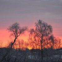 Утро :: Михаил Столяров