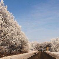 мои дороги... :: Александр Герасенков