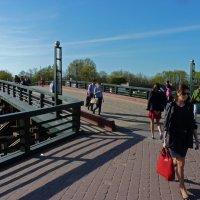 На Кронверкском мосту. :: Александр Лейкум