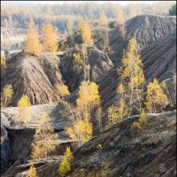 Золотая Осень в Суворовской песочнице :: Михаил Розенберг