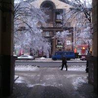 Зима в рамочке :: Сергей Фадеев
