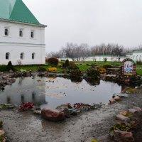 Последние краски осени :: Любовь Жиркова