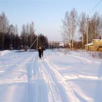 На лыжне :: Талик К