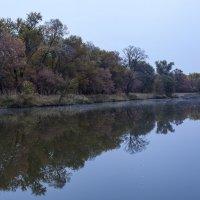 Осень :: Mikhail Arhangel