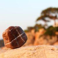 Камень на побережье Средиземного Моря :: Павел Солопов