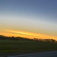 Закат над лесом :: юрий Амосов