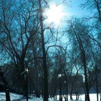 погода солнечная:)) :: Lyba Schlepova