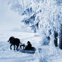 В лес за дровами :: Валерий Талашов