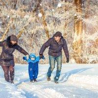 зимняя прогулка. :: Надежда Бирюкова