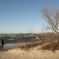 На пляже Stroomi :: Евгений