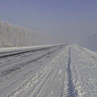 Туманный путь :: Валерий Шибаев