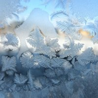 Морозный узор :: galina tihonova