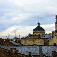 На крыше Львова :: Полина Polli