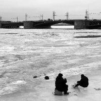 Питерская рыбалка. :: сергей лебедев