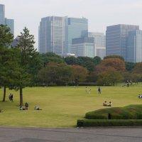Токио (гармонически уравновешенный пейзаж 7-4) :: Sofia Rakitskaia