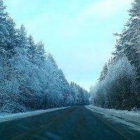 Зима :: Мария Попова