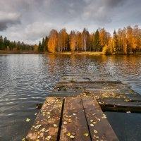 Холодная осень 2013-го... :: Владимир Комышев