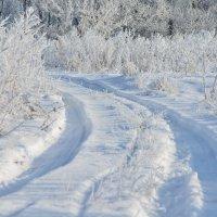 Зимняя сказка :: Виталий Качанов