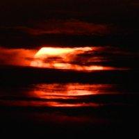 Солнце на рассвете.. :: Касим