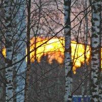 Осенний закат (вид из окна) :: Натали V