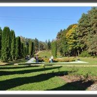 Кисловодск. Долина Роз в курортном парке. :: Ильяс Салпагаров
