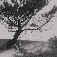 Yuli Juli и дерево :: Ольга Донец