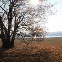 осень :: vitali bezushka