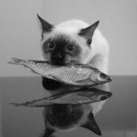 рыба :: Светлана Зборовская