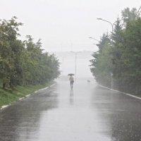 Дождь :: Андрей Агафонов