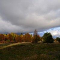 хмурая осень :: Ирина Ирина