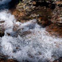 Река :: Виктор Никитин
