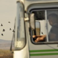 Автобус... :: Maxxx©