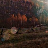 Осень в Аскарово :: Светлана Панфилова