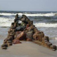 Балтика :: gala difesa