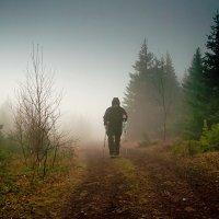 В облаке :: Ольга Чиж