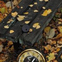 Старинные часы ещё идут... :: Татьяна Желтоборева