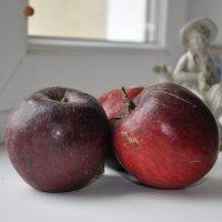 """""""Яблоки на окне"""". :: Юрий Решетар"""