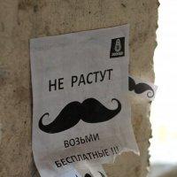Листок! :: Дмитрий Арсеньев