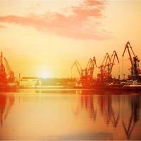 порт Калининград :: Сергей Вьюгин