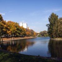 Осенний парк :: Елена Годунова