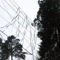 Геометрия неба :: Svetlana Zaytseva